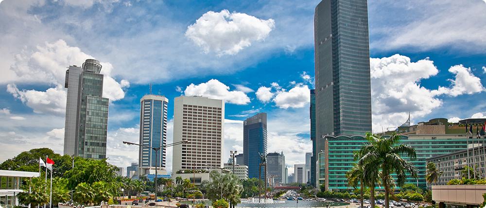 海外事業:インドネシア